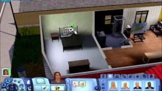The Sims 3 Ep 5 Birth Day Party Planning