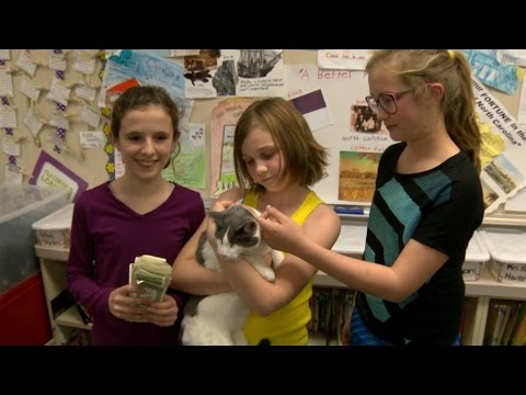 KCRA Rocklin Students Raise Cash For Cats
