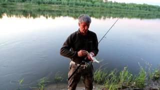 рыбалка на кисляке
