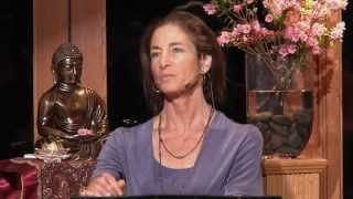 Beyond the Prison of Beliefs - Tara Brach