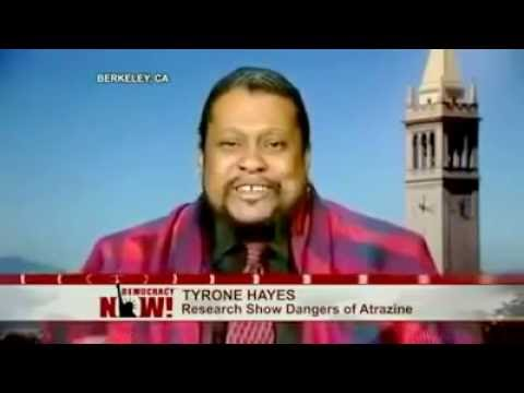 Syngenta Pesticide Makes People Gay According to Tyrone Hayes [Homosexuality]