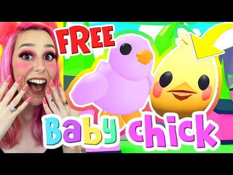 New Baby Chick Pet In Adopt Me How To Get The Exclusive Easter