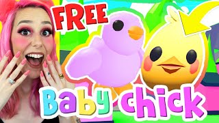 NEW BABY CHICK PET IN ADOPT ME! HOW TO GET THE EXCLUSIVE EASTER EGG! Adopt Me Roblox Egg Hunt 2020