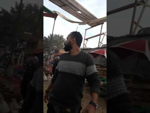 إعتداء المخرج محمد سامى على الممثلين بالسب والقذف والضرب
