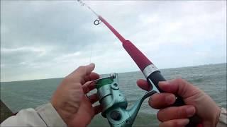 台北港 釣魚 釣遊紀錄 台北港釣魚fish20190127第四段