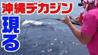 沖縄釣行編ラスト‼ 沖縄で釣れた高級魚「アカジン」や「ジセイミーバイ...