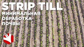 Технология strip-till | Минимальная обработка почвы | Технологии растениеводства