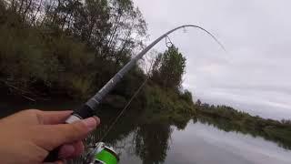 Вот такая у нас рыбалка - Рыбалка как она есть...