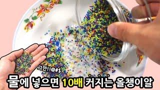 물에 넣으면 10배 커지는 올챙이알 액괴만들기!!(병맛주의)츄팝