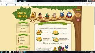 coin-birds лучшая онлайн игра с выводом денег