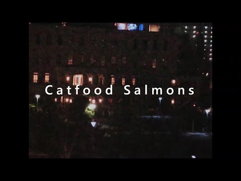 Catfood Salmons 『Daydream』Music Video