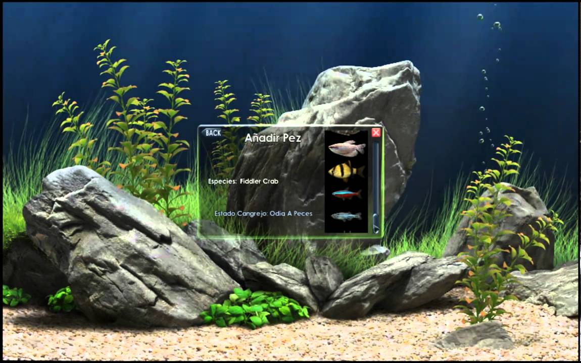 Un acuario en la pc screensaver youtube for Architetto 3d gratis