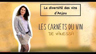 La Paulée des vignerons Bio de l'Anjou - Vanessa, ses carnets du vin #11