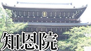 【レッツゴー!京都】レッツゴー!知恩院!Let's go! Chion-in!【Let's go! Kyoto】【パンダホン!】