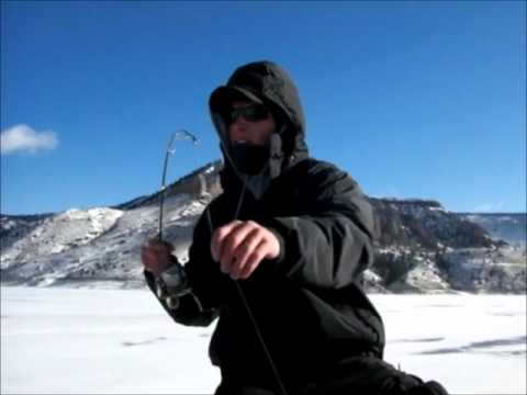 Monster Lake Trout Through The Ice On Blue Mesa Reservoir In Colorado!