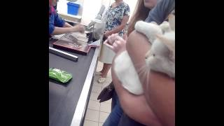 Решыли купить кошку в АТБ