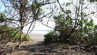 Pantai Marengan Di Blok Bedul Banyuwangi