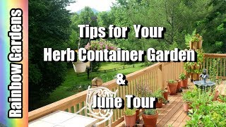 Join me for a June tour of the herb container garden. I had a few i...