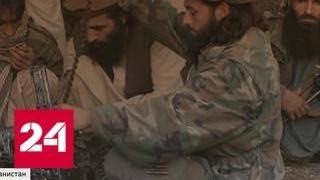 """США 17 лет """"строят демократию"""" в Афганистане, но все никак - Россия 24"""