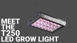 Meet the T250 LED Grow Light [250-Watt]