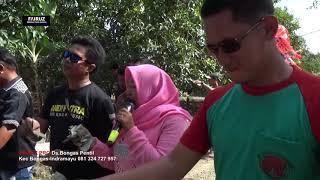 Download Mp3 Andi Putra 1 Cinta Bayangan  Vocwinda Ds Mekarsari Blok Werakas
