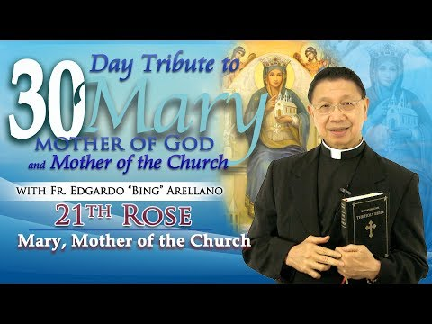 30 DAY TRIBUTE TO MARY   21ST ROSE:   Mary Mother of the Church