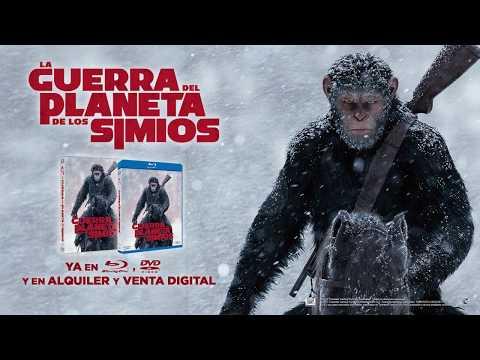 LA GUERRA DEL PLANETA DE LOS SIMIOS | Ya en Blu-Ray™, DVD y Digital