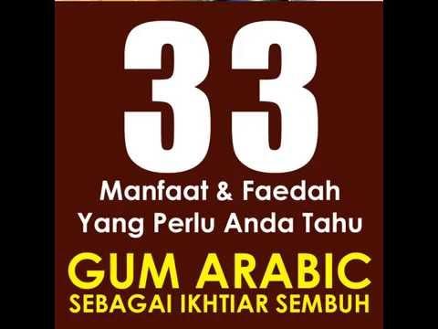 Manfaat Gum Arabic Al-Manna