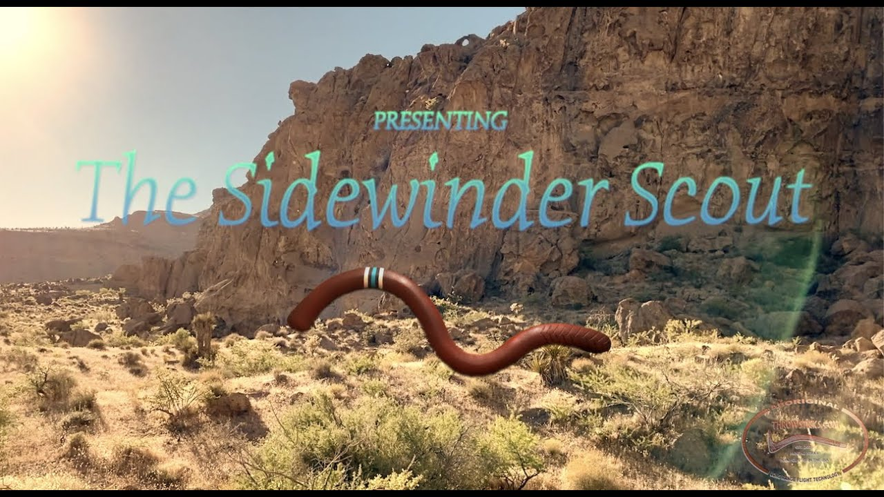 The Sidewinder Scout