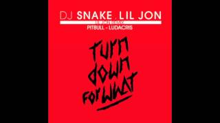 DJ Snake Feat Lil Jon Pitbull Ludacris Turn Down For What Remix