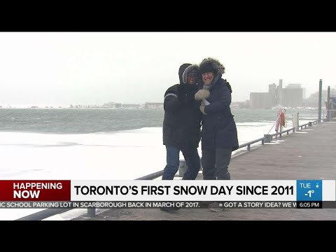 TDSB's First Snow Day Since 2011