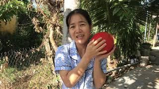 Gambar cover Giới thiệu Dương Nguyễn Family