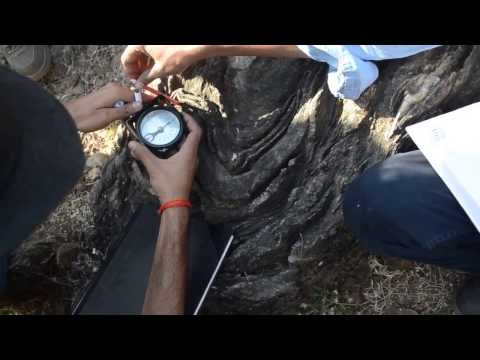 Geological Field demonstration by Prof. T. K. Biswal, Part 4/9 (Measurement of Fold Attitude)