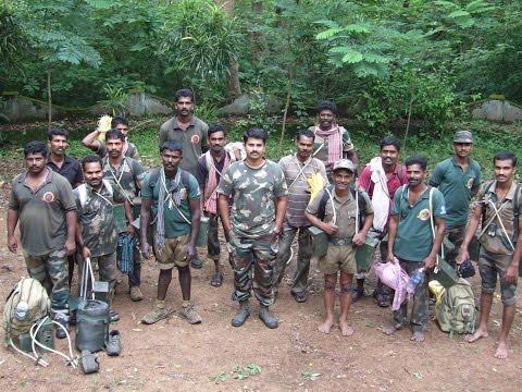 Elephants movement in KMTR, Tamil Nadu, India- By Dr. Subbiah Sathish-Narayanan, Researcher