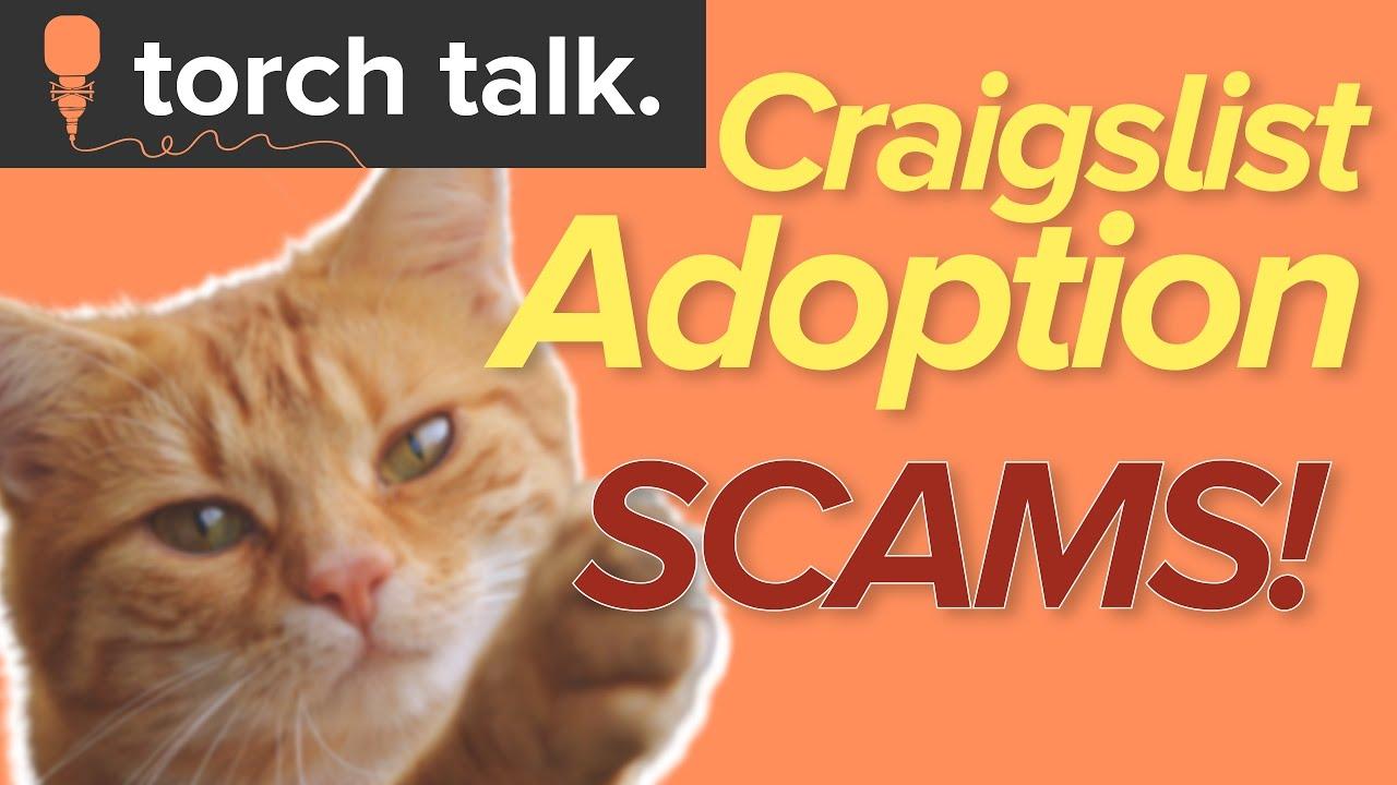 Craigslist Adoption Scams - YouTube