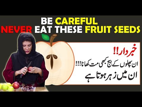 fruits-with-harmful-seeds-by-dr.-bilquis-|-don't-eat-seeds-of-these-fruits-|-poison-in-seeds