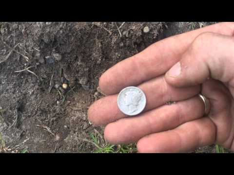Metal Detecting 1940s camp and 1860s homestead. Lots of silver 1800s coins and more