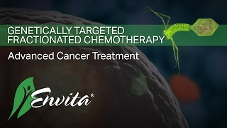 Cancer Treatment - Genetically Targeted Fractionated Chemotherapy