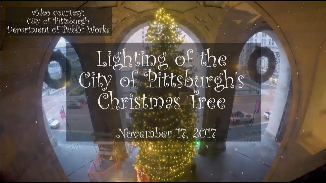 City Of Pittsburgh S Christmas Tree