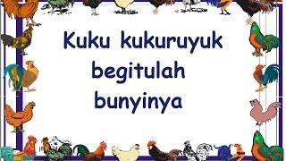 KUKURUYUK (LIRIK) - Lagu Anak - Cipt. .......... Musik Pompi S.