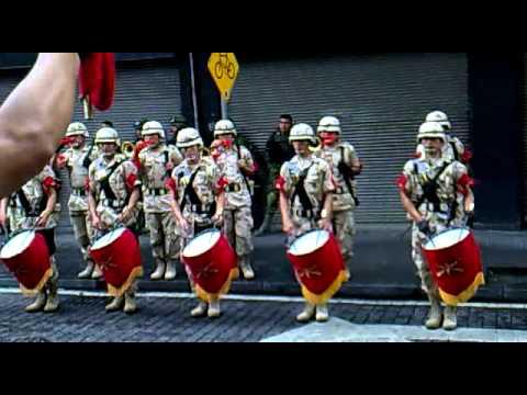 Marcha militar musicos