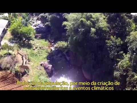 Forest Monitoring with Drones in the Atlantic Forest of Rio de Janeiro, Brazil