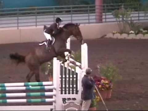 yahoo horse personals