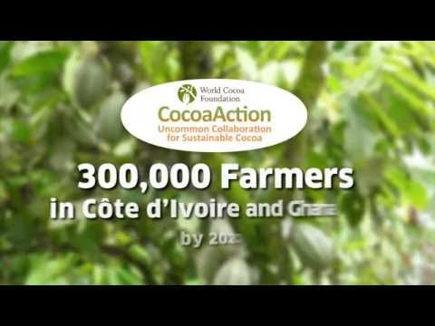 Mars Global Chocolate Supports CocoaAction