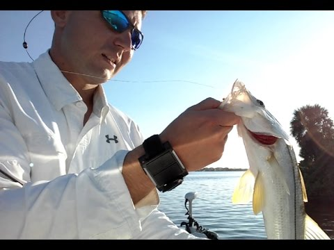Fishing Apollo Beach Power Plant - Snook, Snapper,