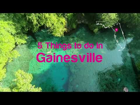Florida Travel: 5 Things To Do In Gainesville
