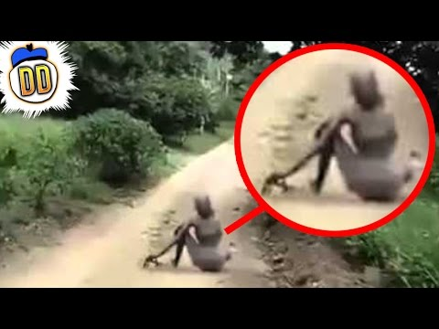 5 Unexplained Sightings Caught On Tape (ft. SlappedHam)