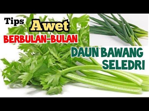 Cara-cara memasak pulut dan membalut ketupat daun palas.. from YouTube · Duration:  15 minutes 1 seconds