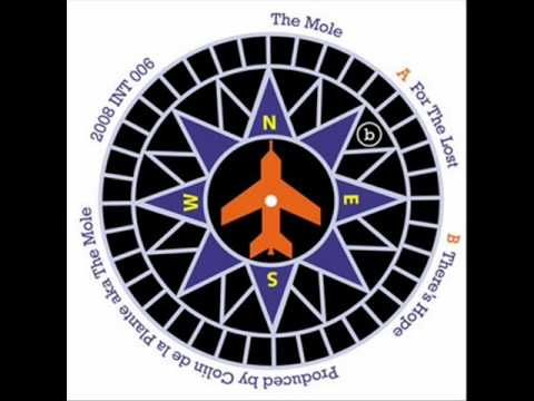 The Mole - For The Lost