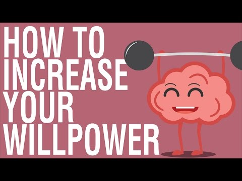 HOW TO INCREASE WILLPOWER THE WILLPOWER INSTINCT BY KELLY MCGONIGAL ANIMATED BOOK REVIEW